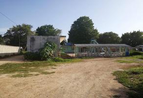 Foto de terreno comercial en venta en  , obrera, mérida, yucatán, 11820370 No. 01
