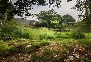 Foto de terreno habitacional en renta en ocampo , altamira centro, altamira, tamaulipas, 12819319 No. 01