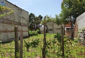 Foto de terreno habitacional en venta en océano indicó 659, cristóbal colon, puerto vallarta, jalisco, 16908494 No. 02