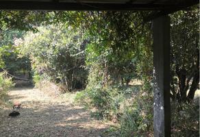 Foto de terreno habitacional en venta en  , ocotepec, cuernavaca, morelos, 11425524 No. 01