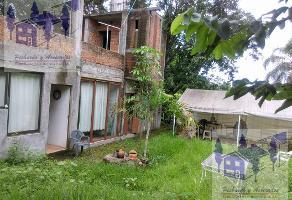 Foto de terreno habitacional en venta en  , ocotepec, cuernavaca, morelos, 11712216 No. 01