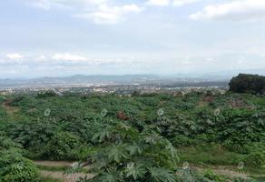 Foto de terreno habitacional en venta en  , ocotepec, cuernavaca, morelos, 11777459 No. 01