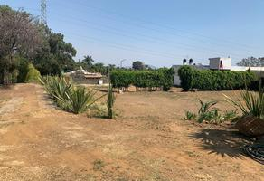 Foto de terreno habitacional en venta en  , ocotepec, cuernavaca, morelos, 14342626 No. 01