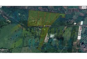 Foto de terreno habitacional en venta en  , ojite, tuxpan, veracruz de ignacio de la llave, 0 No. 01
