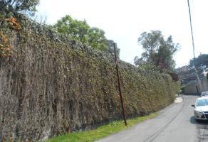 Foto de terreno habitacional en venta en  , olivar de los padres, álvaro obregón, df / cdmx, 10687591 No. 01