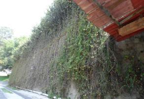 Foto de terreno habitacional en venta en olivar de los padres sin número, olivar de los padres, álvaro obregón, df / cdmx, 0 No. 01