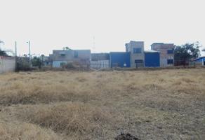 Foto de terreno habitacional en venta en olivo , san jose del castillo, el salto, jalisco, 3082512 No. 01