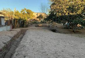 Foto de terreno habitacional en venta en olivos , bronce, ensenada, baja california, 0 No. 01