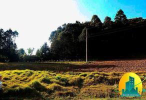 Foto de terreno habitacional en venta en  , omitlán de juárez centro, omitlán de juárez, hidalgo, 10903908 No. 01