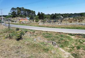 Foto de terreno habitacional en venta en  , omitlán de juárez centro, omitlán de juárez, hidalgo, 12151847 No. 01
