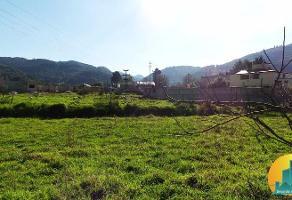 Foto de terreno habitacional en venta en  , omitlán de juárez centro, omitlán de juárez, hidalgo, 8063870 No. 01