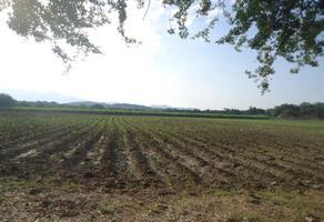 Foto de terreno comercial en venta en oo xx, tehuixtla, jojutla, morelos, 0 No. 01
