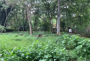 Foto de terreno habitacional en venta en oro verde , la purísima, coatepec, veracruz de ignacio de la llave, 0 No. 01