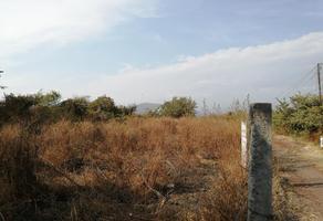 Foto de terreno habitacional en venta en  , otilio montaño, yautepec, morelos, 18203427 No. 01