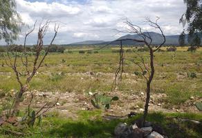 Foto de terreno habitacional en venta en  , otumba de gómez farias, otumba, méxico, 0 No. 01