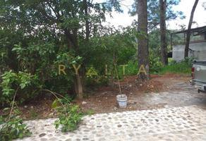 Foto de terreno comercial en venta en oyamel 120, del bosque, cuernavaca, morelos, 0 No. 01