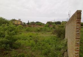 Foto de terreno habitacional en venta en pala 89, tlayacapan, tlayacapan, morelos, 6828315 No. 01
