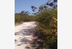 Foto de terreno comercial en venta en  , forjadores de quintana roo, othón p. blanco, quintana roo, 11122013 No. 01
