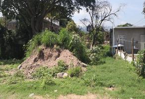 Foto de terreno habitacional en venta en palma abanico , progreso, puerto vallarta, jalisco, 13824238 No. 01