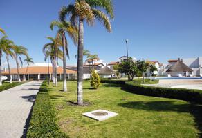 Foto de casa en renta en palma paraiso , villas palmira, querétaro, querétaro, 0 No. 01