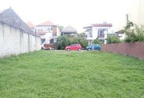 Foto de terreno habitacional en venta en palma real 10, flamingos, tepic, nayarit, 0 No. 01