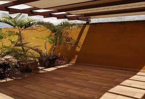 Foto de departamento en renta en palma real , el palmar, cuernavaca, morelos, 0 No. 01