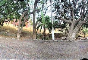 Foto de terreno habitacional en venta en palma real , palmira tinguindin, cuernavaca, morelos, 10915870 No. 01