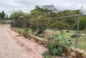 Foto de terreno habitacional en venta en palmeras lt. 19 , real del puente, xochitepec, morelos, 0 No. 01