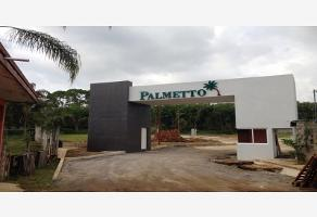 Foto de terreno habitacional en venta en palmetto , los pinos, fort?n, veracruz de ignacio de la llave, 443447 No. 02