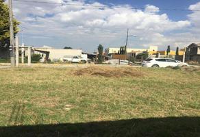 Foto de terreno habitacional en venta en palmillas , santiago tlaxomulco centro, toluca, méxico, 0 No. 01