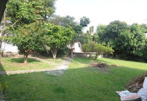 Foto de casa en venta en palmira 25, palmira tinguindin, cuernavaca, morelos, 0 No. 01