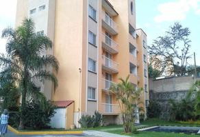 Foto de departamento en renta en  , palmira tinguindin, cuernavaca, morelos, 10733420 No. 01