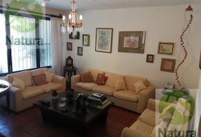 Foto de casa en renta en  , palmira tinguindin, cuernavaca, morelos, 11546774 No. 01