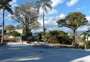 Foto de terreno habitacional en venta en  , palmira tinguindin, cuernavaca, morelos, 1289605 No. 01
