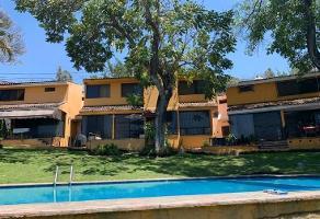 Foto de casa en renta en  , palmira tinguindin, cuernavaca, morelos, 13591825 No. 02