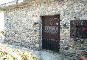 Foto de terreno habitacional en venta en  , palmira tinguindin, cuernavaca, morelos, 14110232 No. 01