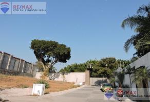 Foto de terreno habitacional en venta en  , palmira tinguindin, cuernavaca, morelos, 0 No. 01