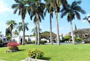 Foto de departamento en renta en  , palmira tinguindin, cuernavaca, morelos, 20884086 No. 01