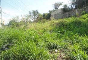 Foto de terreno habitacional en venta en  , palmira tinguindin, cuernavaca, morelos, 2100901 No. 01