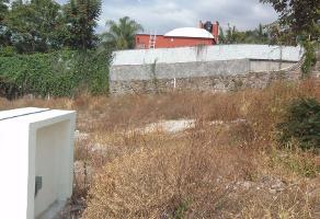 Foto de terreno habitacional en venta en  , palmira tinguindin, cuernavaca, morelos, 2594301 No. 01