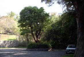 Foto de terreno habitacional en venta en  , palmira tinguindin, cuernavaca, morelos, 2632365 No. 01