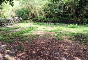 Foto de terreno habitacional en venta en  , palmira tinguindin, cuernavaca, morelos, 2877689 No. 01