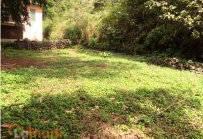 Foto de terreno habitacional en venta en  , palmira tinguindin, cuernavaca, morelos, 3880438 No. 01