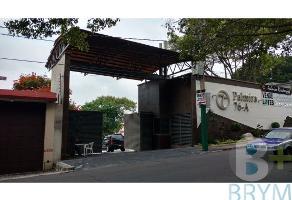 Foto de terreno habitacional en venta en  , palmira tinguindin, cuernavaca, morelos, 4419823 No. 03