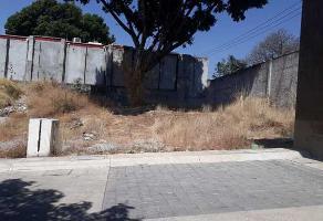 Foto de terreno habitacional en venta en palmira tinguindin , palmira tinguindin, cuernavaca, morelos, 12332215 No. 01
