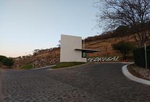 Foto de terreno habitacional en venta en palo dulce 3, pedregal de san miguel, tlajomulco de zúñiga, jalisco, 6805662 No. 01