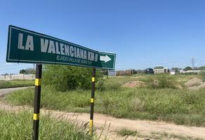 Foto de terreno habitacional en renta en  , palo verde, hermosillo, sonora, 0 No. 01