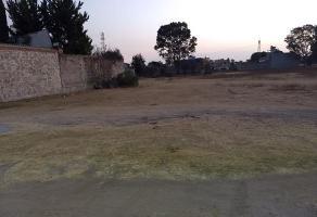 Foto de terreno habitacional en venta en  , papalotla, papalotla, méxico, 15588741 No. 01