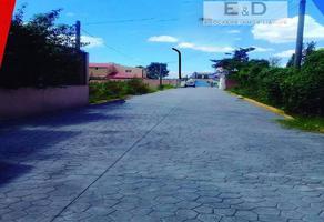 Foto de terreno habitacional en venta en  , papalotla, papalotla, méxico, 0 No. 01