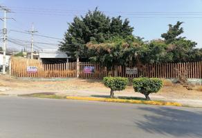 Foto de terreno habitacional en renta en  , paracas, yautepec, morelos, 0 No. 01